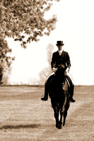 DressageWalkerSepia2